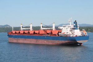 Bulk Carrier CHINA DY3030