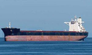Bulk Carrier Daehan Shipbuilding HN1016