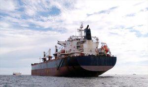Bulk Carrier DAYANG SHIPYARD DY 3003