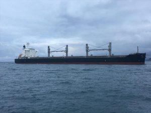Bulk Carrier Iwagi Zosen S-Z381