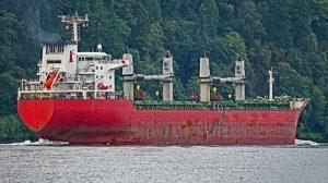 Bulk Carrier PT PAL INDONESIA NO. 230