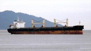 Bulk Carrier Sainty Shipbuilding 2018