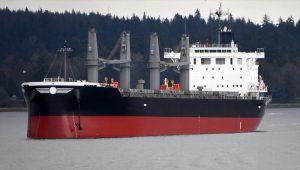 Bulk Carrier Shin Kurushima Dockyard S3732