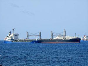 Bulk Carrier Shin Kurushima Dockyard SNO.3733