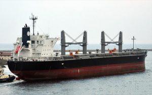 Bulk Carrier Shin Kurushima S3731