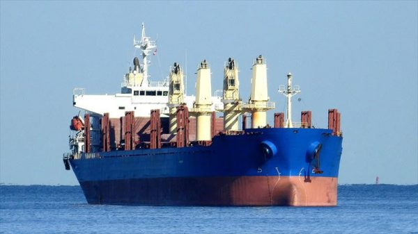 Bulk Carrier The Hakodate Dock S807
