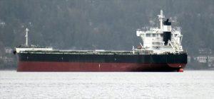 Bulk Carrier Tsuneishi Group SS157