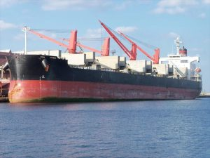 Bulk Carrier TSUNEISHI HEAVY INDUSTRIES SC088