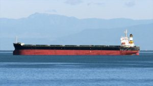 Bulk Carrier Tsuneishi Shipbuilding 2007