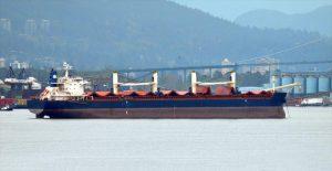 Bulk Carrier YANGZHOU DAYANG DY-3013