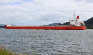 Tsuneishi Heavy Industries SC238